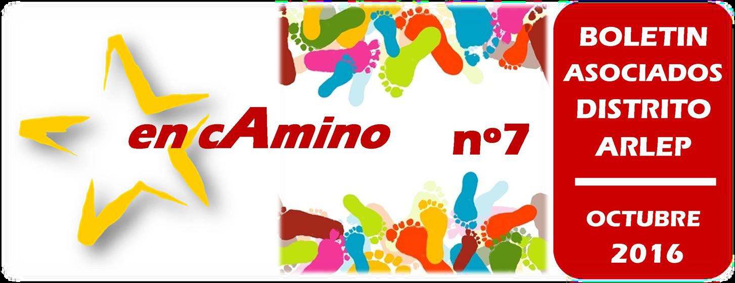 en-caminino-no7
